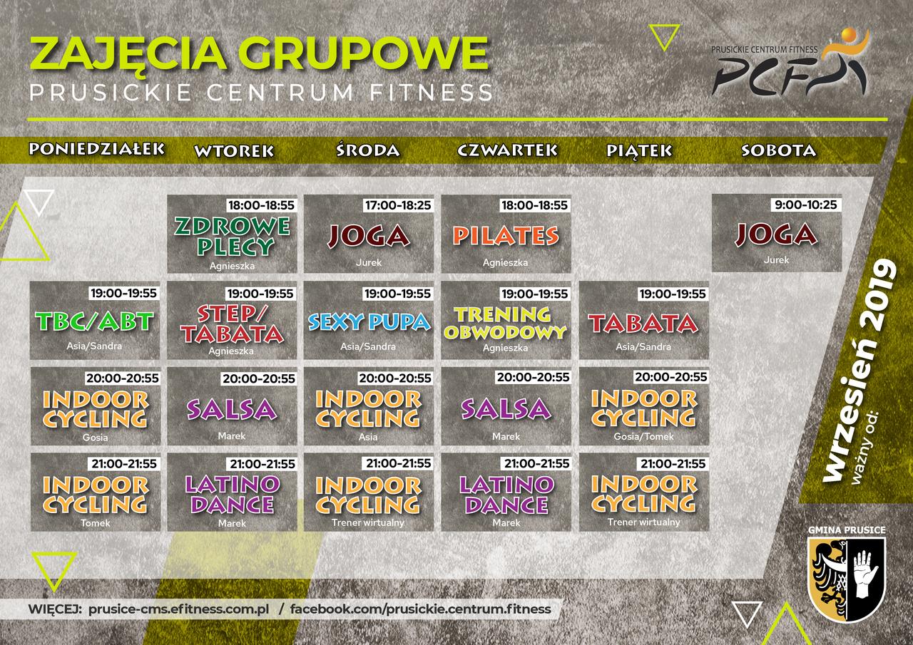 PCF grafik v4-02.jpeg
