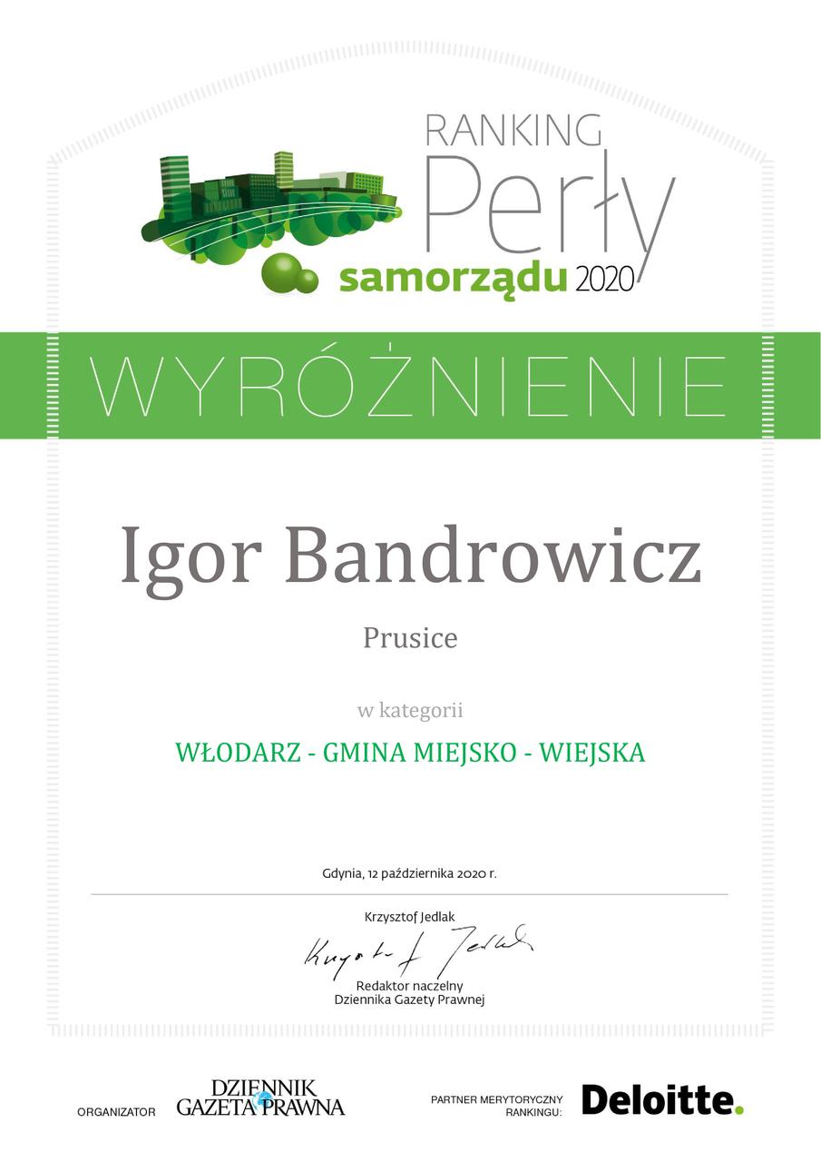 18_Igor Bandrowicz_Prusice_wyróznienie-01.jpeg