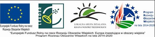 logo dębnica.png