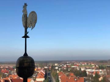 Galeria Wizyta studentów w Prusicach