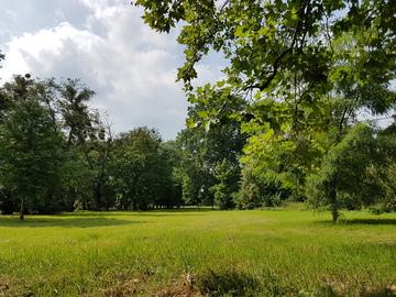 Galeria Park Bażanta